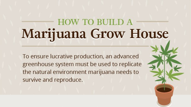 how to build a marijuana grow house